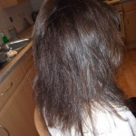 Frizz, prior to the Keratin Treatment